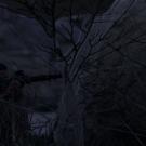 SniperElite3 2017-10-04 20-03-31-54