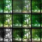 interfata_asus_zenfone_5_camera_9