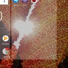 Screenshot_20171011-095020