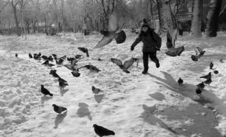 O iarnă frumoasă și o compactă, la București. Canon G5X
